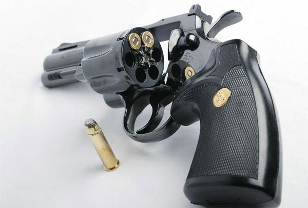 Concepto sobre para la adquisición, cesión y revalidación de permisos de tenencia o porte de armas de fuego emitido por la Supervigilancia